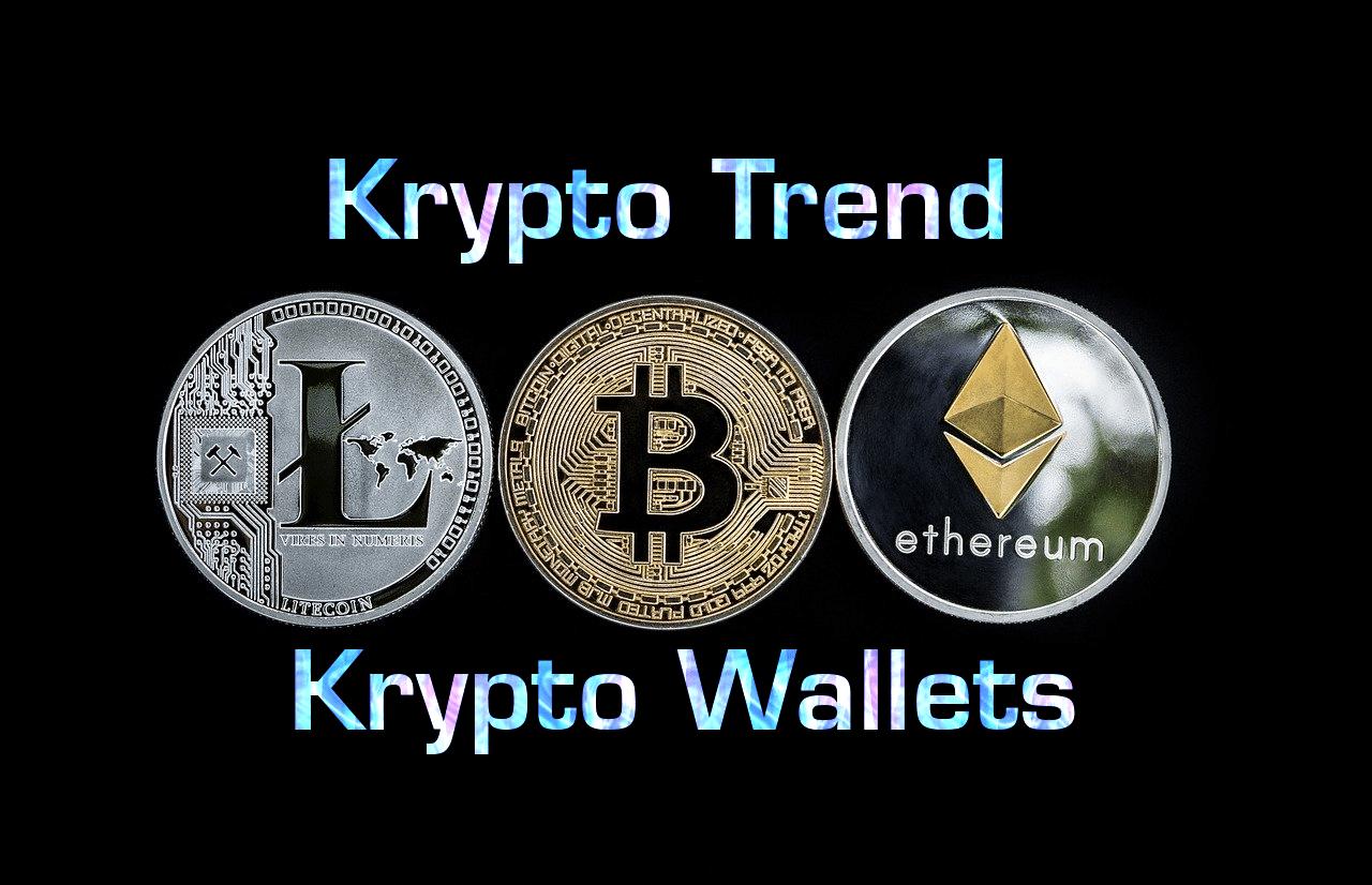 Bitcoin Wallets | Alles was Ihr wissen müsst