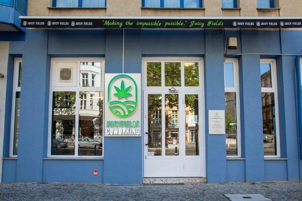 cannabisanbau
