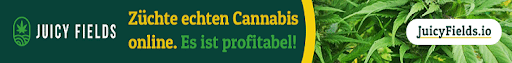 geld verdienen mit cannabis